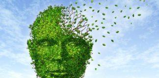 Mangia sano e migliora la tua memoria