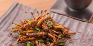 Perché finiremo con il mangiare insetti?