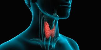 Problemi di tiroide? Ecco i cibi da mangiare e da evitare
