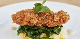 La carne di pollo diventerà sintetica, entro 5 anni nei supermercati