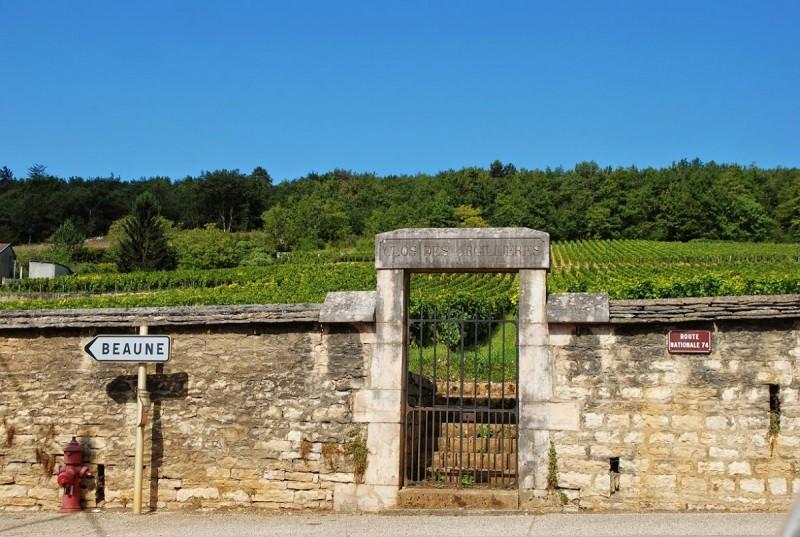 Loro Lo Fanno Meglio Il Vino Francese