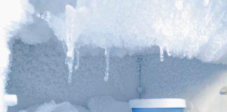 Cibi congelati