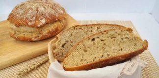 pane rustico con bimby