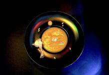 potage di melone con piccoli polli