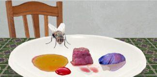 una mosca a cena